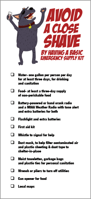 Emergency Supply Kit Rack Card