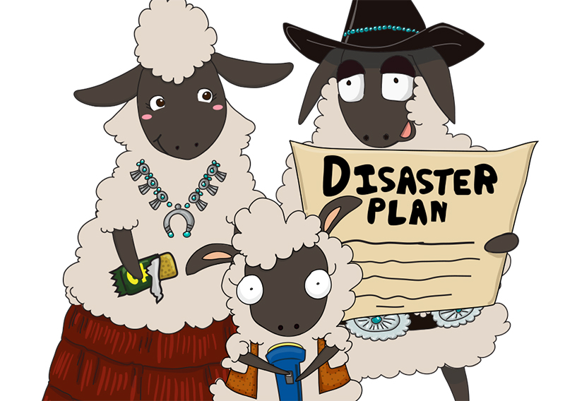 Three Little Sheep Campaign