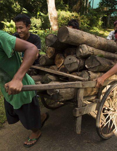 Wood Haulers