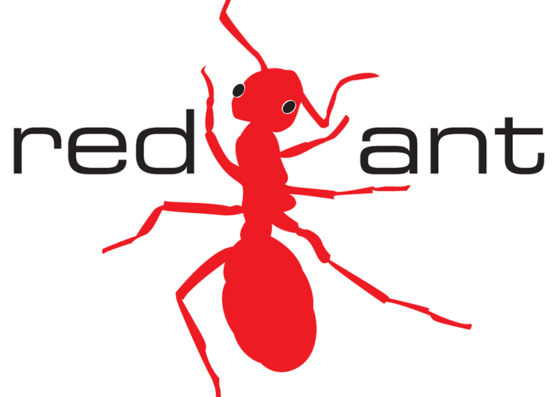 Red Ant Productions Identity